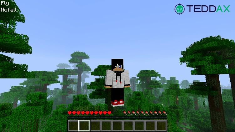 Minecraft Fly Hack